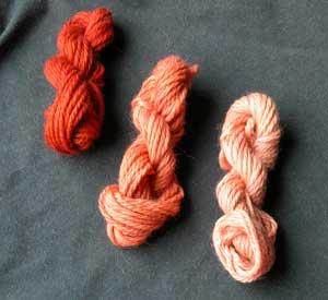 Small skeins dyed with 11 Cortinarius sanguineus