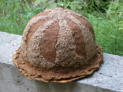 Mushroom bowler