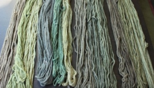Hydnellum colours